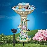 MSR Solar Birdbath Fountain Garden Stake