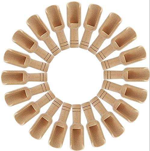 Camidy Mini Wooden Spoons,Spices Salt Powder Sampling Spoon,Square Tasting Spoon Home Honey Condiments Coffee Serving Spoons Teaspoon 10 or 20 Pack Set