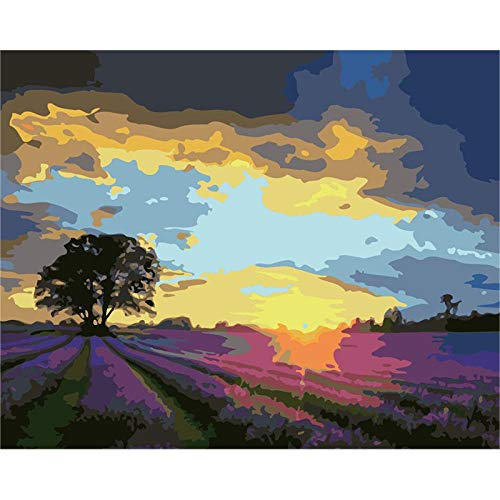Verf door cijfers voor volwassenen zonsondergang Lavendel Kit DIY olieverfschilderij tekenen Canvas met borstels Decoraties Geschenken - Frameless 16 * 20 Inch