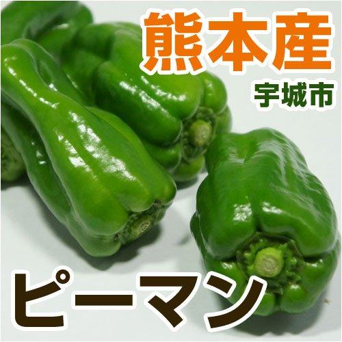 あいあい 熊本県産 ピーマン 【野菜セット同梱で】【九州 野菜】