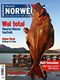FISCH & FANG Sonderheft Nr. 34: Norwegen Magazin Nr. 4 + DVD (Norwegen Magazin / Das Magazin für...
