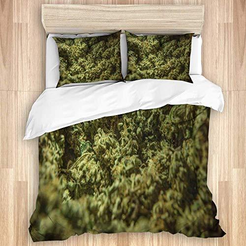 Funda nórdica, Green License Cannabis Marijuana Sativa Heads 420 Agriculture Bud, Juego de Cama de Microfibra de Calidad Ultra Suavidad Cómodo Diseño Moderno