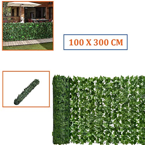 Siepe Evergreen Edera mt. : 1x3