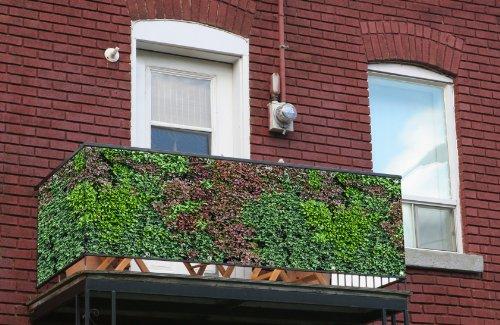 Generisch Sichtschutz Motiv: Mixi in Premium-Qualität von myfence - Windschutz & Balkonbespannung für Zaun & Balkon (Winddurchlässige PVC-Lochfolie (einseitig, 300g), 500 x 75 cm)