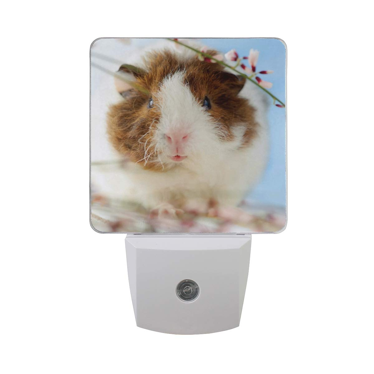 Linomo Over item handling LED Night Outlet sale feature Light Lamp Floral Guinea Flower S Auto Cute Pig