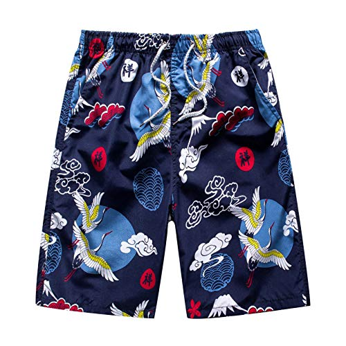 Toimothcn Men's Outdoor Swimming Shorts Five-Point Pants Beach Trunks Loose Quick Dry Pant(2-Navy,3X)