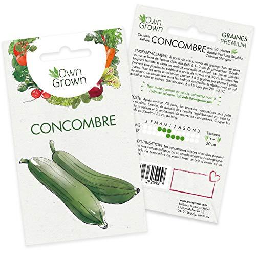 Graines de concombre (Cucumis sativus), graines de concombre à cultiver OwnGrown, graines pour environ 30 plants de la variété Chinese Slangen