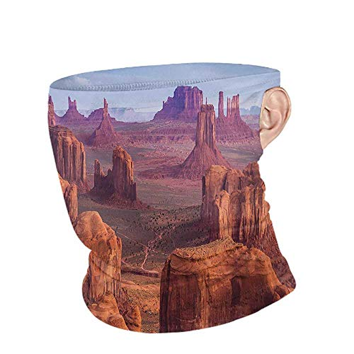 DuDuDoghome Bandana Summer Canyon View of Deep Canyon with Different Scaled Length Red Rocks Discovery Artwork Theme,Tactical Neck Tubes Brown Blue 10 x 12 Inch