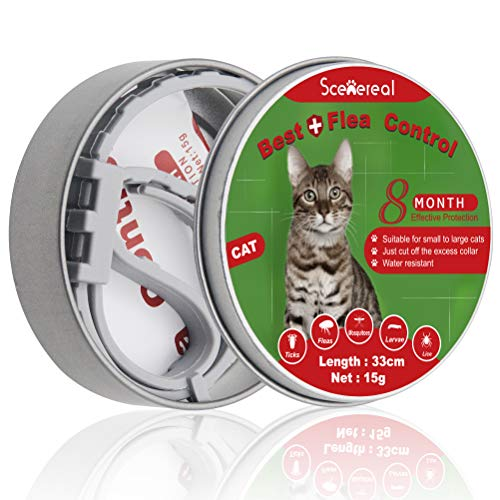 Collares Scenereal contra pulgas y garrapatas para gatos. Protección durante 8 meses. Collar ajustable para gatos, cachorros y mascotas pequeñas