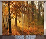 ABAKUHAUS Otoño Cortinas, Brumosa otoñal Bosque, Sala de Estar Dormitorio Cortinas Ventana Set de Dos Paños, 280 x 245 cm, Naranja Marrón Verde