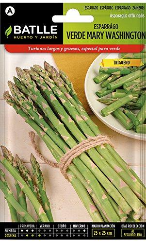 Batlle Gemüsesamen - Grüner Spargel Mary Washington (120-180 Samen)