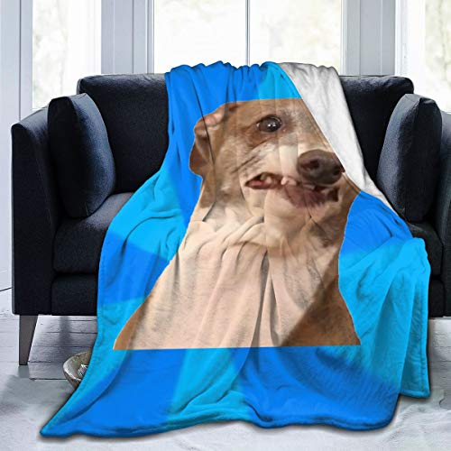 Kermit Dog Ultra-Soft Micro Fleece Blanket Throw Super Soft Fuzzy Lightweight Hypoallergenic Plush Bed Couch Living Room
