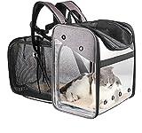PETEMOO Portador de Viaje Mochila Bolsa de Transporte para Mascotas Perros Gatos Malla Completa Transpirable Transportín Jaula Capazos Transportadoras Plegable Viaje Coche Portátil
