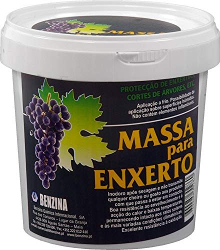 Benzina 367798 Pasta Cicatrizante Injertos, Blanco