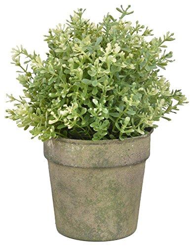Esschert Design AM92 Pot de Fleurs Vert Taille Unique