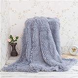 KAIHONG Kuscheldecke Wohndecke Tagesdecke Microfaser Kunstfell Decke für Couch Bett Leicht flauschig - (160 x 200 cm, Grau)