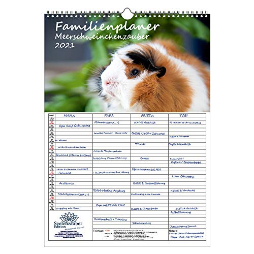 Familienplaner - Meerschweinchenzauber DIN A3 Kalender für 2021 Meerschweinchen - Geschenkset Inhalt: 1x Kalender, 1x Weihnachtskarte (insgesamt 2 Teile)