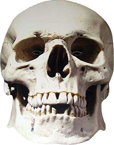 Halloween - Crâne (Skull) - Effrayant - Masque de Visage Fait en Carte Rigide