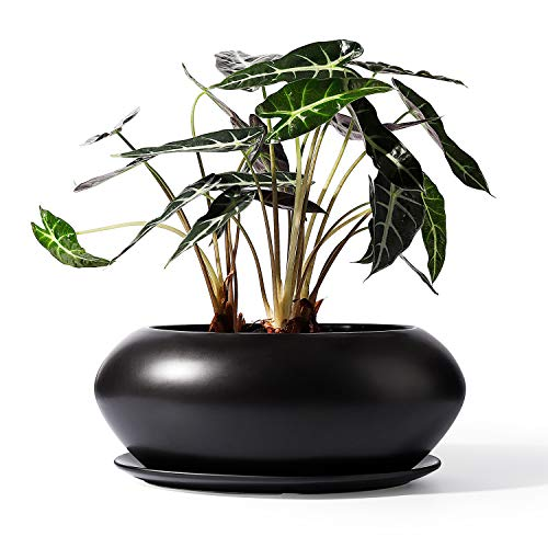 POTEY Ceramic Plant Flower Pots - 9.4 Inch Planter Bonsai Large Container Large Space - Drain Hole with Saucer, Matte Black