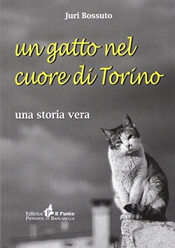 Un gatto nel cuore di Torino. Una storia vera