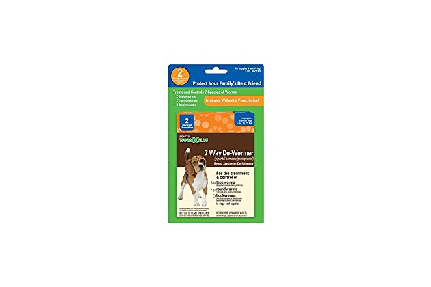 Best drontal plus for dogs | Amazon com