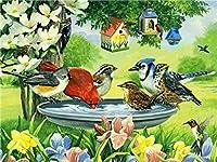 DIY 数字 油絵 塗り絵 キット 大人 子ども 塗り絵 小鳥が水を飲む デジタル油絵 手塗り 数字キットによる絵画 絵かき インテリア 壁飾り ホームデコレーション 40x50cm(額縁なし)
