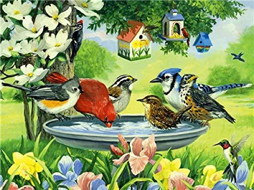 N/O Verf Door Getallen Vogelhuisje Basin Schilderen door Getallen Kits voor Beginners Volwassenen DIY Hand Geschilderd met Borstels en Acryl Pigment 16x20 inch Frameless