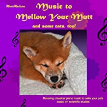 Music to Mellow Your Mutt