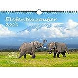 Elefantenzauber DIN A4 Kalender für 2021 Elefanten - Geschenkset Inhalt: 1x Kalender, 1x Weihnachts- und 1x Grußkarte (insgesamt 3 Teile)