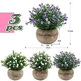 Zoom IMG-1 vinfutur 3 pz piante artificiali