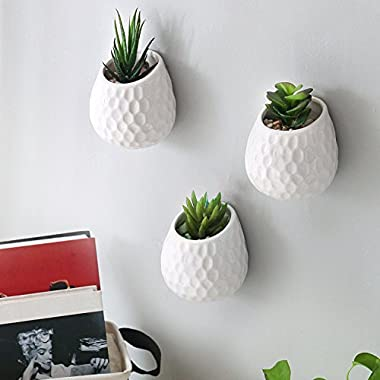 4 Inch Golf Ball-Inspired White Ceramic Wall-Mountable Mini Planters, Hanging Succulent Pots, Set of 3