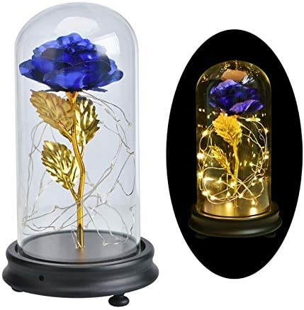 Artificial and Kansas City Mall Tampa Mall Dried Flower BirthdayBeauty The Beast Red 24K