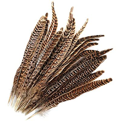 MWOOT 20pcs Natural Pheasant Tails Feather for Hair Hats Crafts Home Wedding Party Decoration (25-30cm)