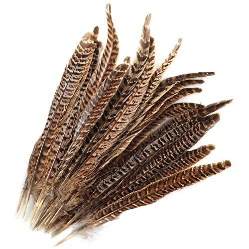 MWOOT plumas de cola de faisán naturales 20pcs 25-30cm decoración ara boda, fiestas de cumpleaños