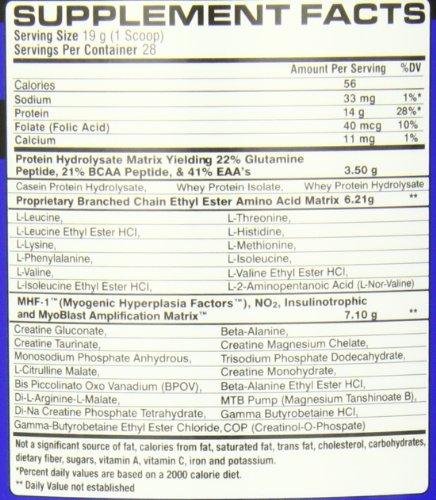 SYNTHESIZE Fruit 1.42LB