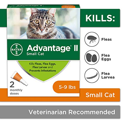 Flea Prevention for Cats, 5-9 lbs, 2 Doses, Advantage II