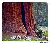 SequoiaNationalPark,KalifornienMousepadGamingMousePad