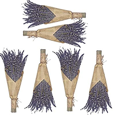 Cedar Space 100% Dried Lavender Bundles for Wedding Decoration,Home Fragrance,DIY Project,6 Bundles Pack