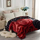 YHSF Korean Faux Mink Blanket 5 LB - 2 Ply Reversible Fuzzy Silky Super Warm and Cozy Embossed Blanket Queen Size Flower Rose Black Design