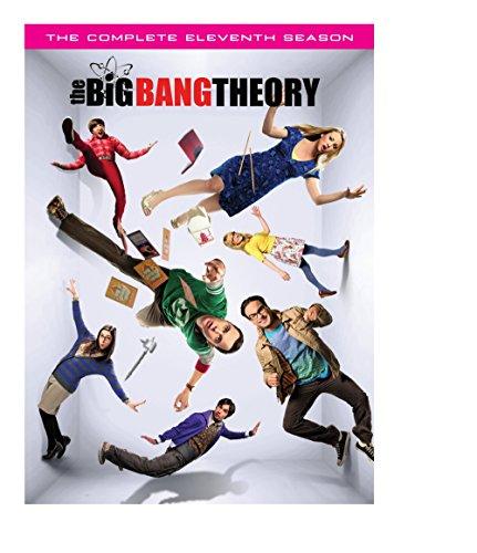 Big Bang Theory: Complete Eleventh Season (2 Dvd) [Edizione: Stati Uniti] [Italia]