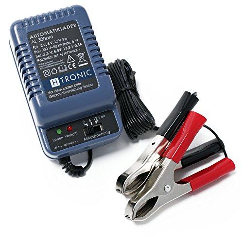 WilTec H-Tronic AL300pro Mainteneur de Charge Automatique 2V 6V 12V