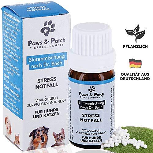 Paws & Patch Bachblüten für Hunde & Katzen Stress Notfall, pflanzliches Beruhigungsmittel vor Tierarztbesuchen, Reisen, nach Unfällen, an Silvester