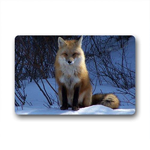 Doubee Paillasson Design Animals Fox Premium Tapis Anti-Poussière passwort en Plein air intérieur 46 cm x 76 cm, Tissu, E, 18\