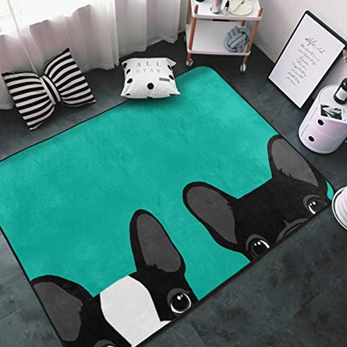 NiYoung Super Soft Area Rug for Living Room Bedroom Kitchen Nursery, Modern Design Carpet Doormat, Home Holiday Decor Floor Carpet (Boston Terrier and French Bulldog Turquoise Green)