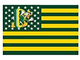 Oregon Duck Nation stars and stripes Fly banners flag 3ftx5ft