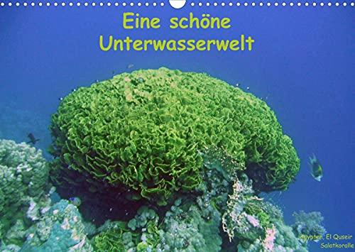 Eine schöne Unterwasserwelt (Wandkalender 2022 DIN A3 quer)