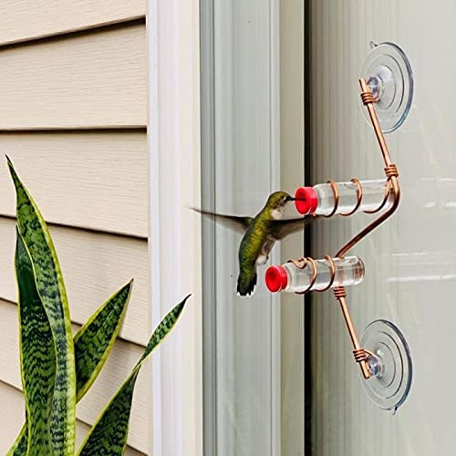 Suction Cup Glass Sale price Wild Limited time for free shipping Bird Window Drinker Outdoor Garden Feeder