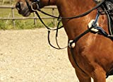 Windsor Equestrian Horses Leather 5 Point Breastplate Black Cob