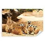Postereck - 3248 - Erdmännchen, Tier Familie Afrika