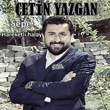 Sepe Harketli Halay